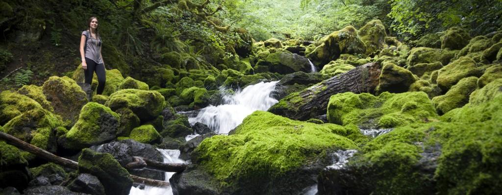 Falls Creek Hike