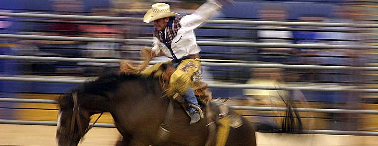 Rodeo USA